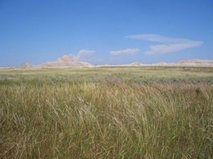 Oglala National Grassland, Nebraska USA, near Toadstool Geologic Park, image released to public domain by author Brian Kell