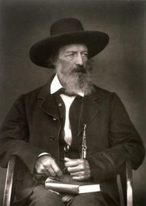 Alfred Lord Tennyson, between 1870 and 1879, by Julia Margaret Cameron, public domain image
