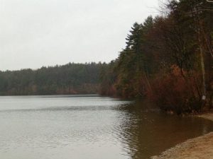 Walden Pond in the Spring, photo released by its author Shadow0704 to public domain