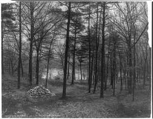 Walden, Site of Thoreau's cabin, marked by a pile of rocks, public domain image